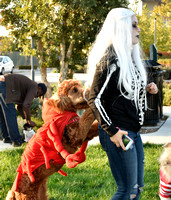 2017 Bay Meadows Howl-0-Ween 012
