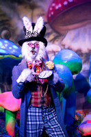 2016 12 14 Alice in Wonderland